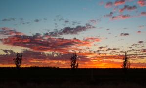 leeton sunset