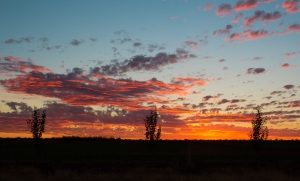 leeton sunset