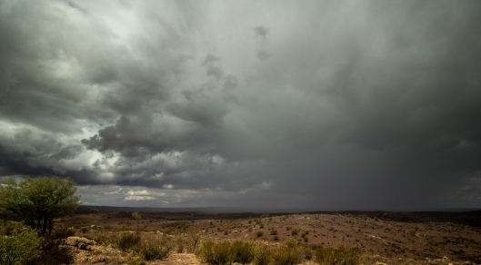 20160130 rain BH